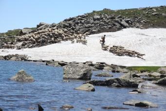 kashmir high al;titude lakes trek
