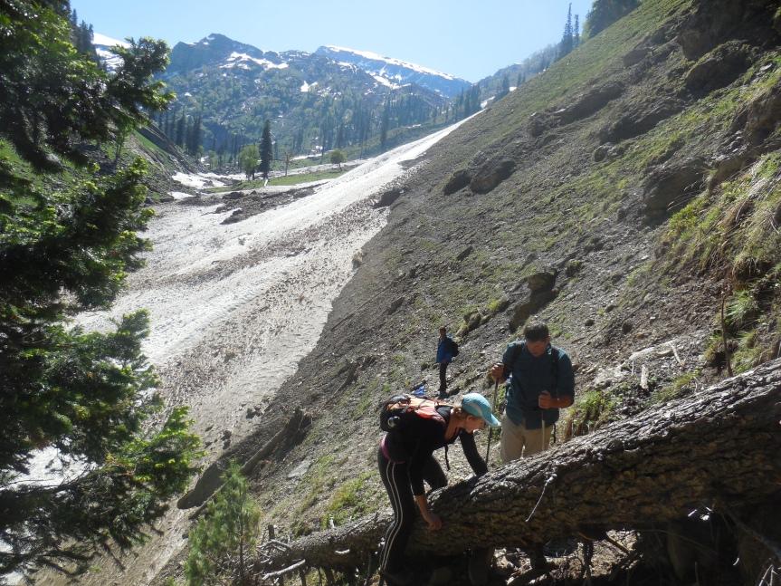 trekking in kolahoi massif