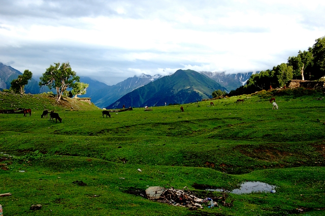 Kashmir high altitude lakes trekking