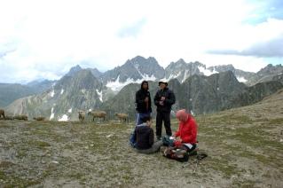 kashmir great lakes trekking