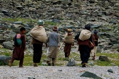 Kashmir alpine pastures